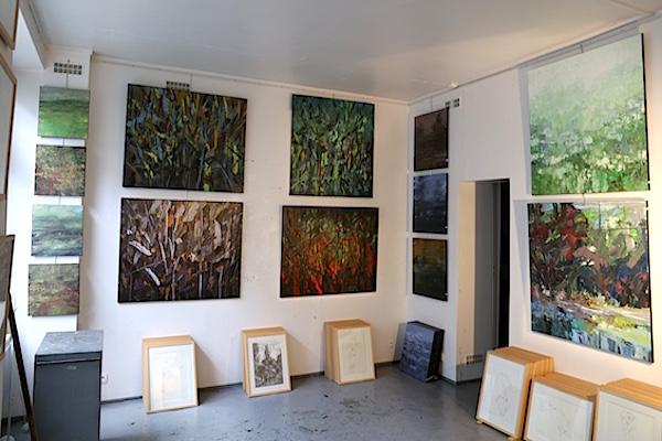 François-Edouard Finet Atelier Exposition 2016