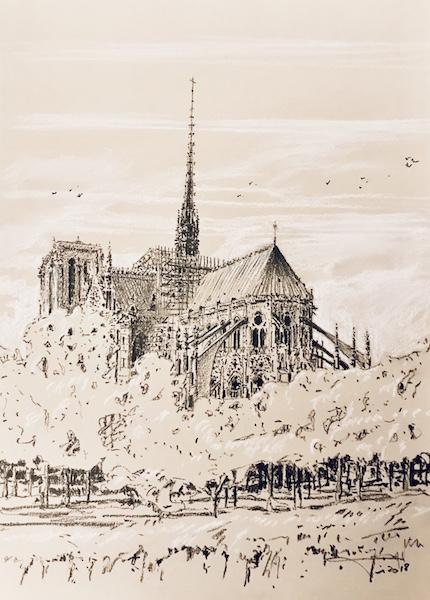 Notre Dame de Paris et les oiseaux 30x42cm 2018